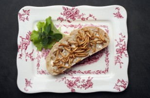 In this photo illustration dried mealworms seasoned with an African rub of cinnamon, coriander, pepper and other spices and bought at a store selling insects for human consumption lie presented on a slice of bread on May 7, 2014 in Berlin, Germany. An inc