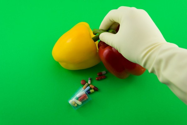 Paprika GMO