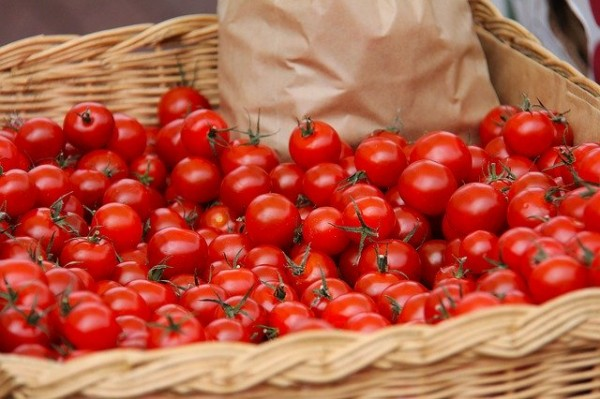 Fresh Farm Tomatoes