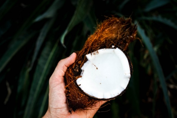 A Complete Guide on Making Cold-Processed Virgin Coconut Oil