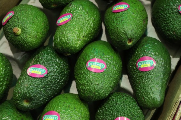 Watch Out! Too Much Avocado May Not Be Good For You