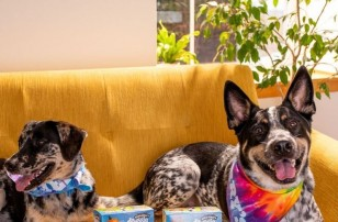 Ben & Jerry's Introduces Pet-friendly Ice Cream Treat For Man's Best Friend