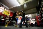 Daniel Jacobs & Yuri Foreman Media Workout