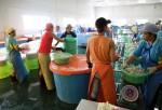 Shrimp Factory at Thailand