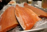 FDA Says Genetically Modified Salmon Is Safe to Eat
