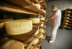 Fake Cheese: Cheese Marketed as 100% Parmesan Do not Contain Parmesan At All