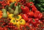 2011 Gruene Woche Agricultural Trade Fair