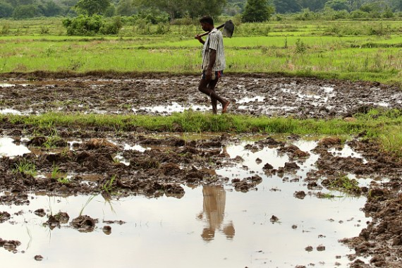 Sri Lanka Seeks International Assistance to Develop War Ravaged Areas
