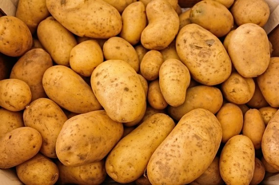Potatoes can aid weight loss