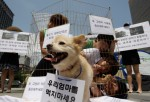 Members of Coexistence for Animal Rights confine themselves in a cage as a protest against eating dog meat on Aug. 7, 2012 in Seoul, South Korea.
