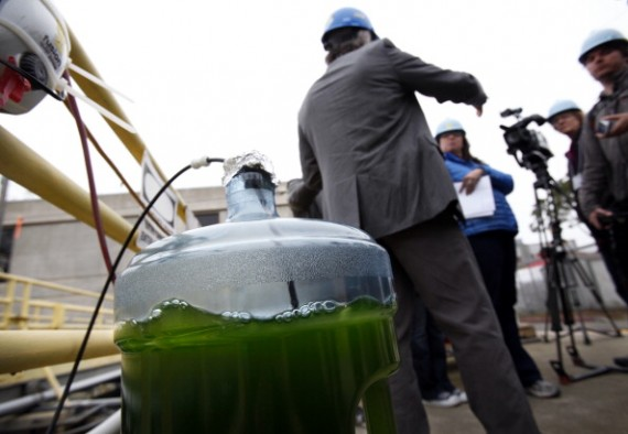NASA Offers Tour Of Its Offshore Membrane Enclosure For Growing Algae (OMEGA) System