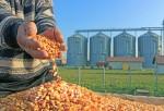 Kusto Group's Yerkin Tatishev Plans to Turn Kazakhstan into a Seed Hub of Eurasia