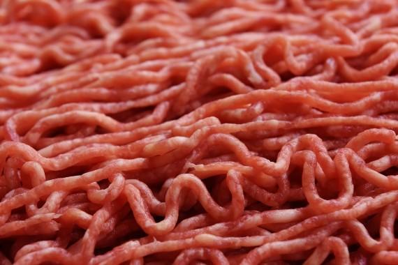 Salmonella Outbreak: Public Health Alert Issued for Ground Turkey